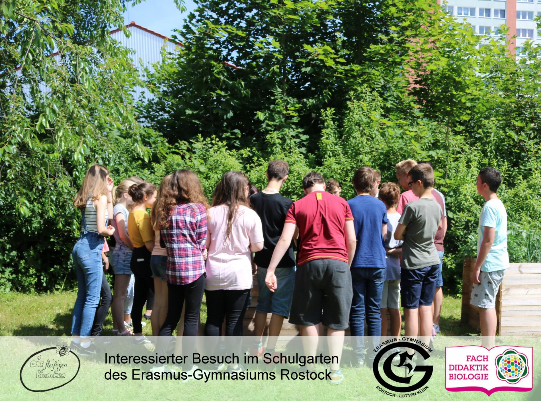 Schulgartentag 2017